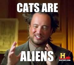 Make A Meme Aliens - meme maker cats r aliens confirm