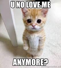 Why You No Love Me Meme - u no love me anymore sad sad kitten meme generator