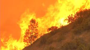 Wildfire Davis Ca by Detwiler Fire Surges In Gold Country Near Yosemite Abc7news Com