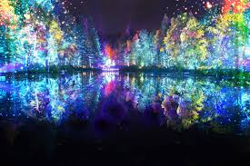 enchanted forest of light tickets enchanted forest reveals new creative talent behind shimmering new
