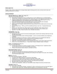 Sample Fashion Resume by Resume For Sales Associate Retail Merchandise Planner And Buyer