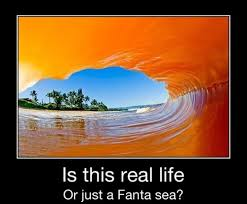 Fanta Sea Meme - is this real life or just a fanta sea jpegy what the internet