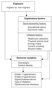 influence of socio economic and lifestyle factors on overweight