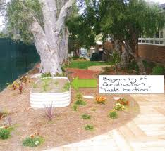 food gardens for children with special needs nsw environment