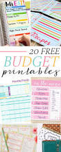 Pto Spreadsheet Template 25 Best Budget Worksheets Ideas On Pinterest Free Budget