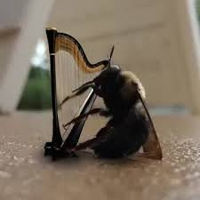 Harp Meme - dying bee playing a harp gif on imgur