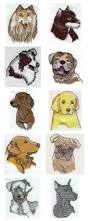 australian shepherd embroidery designs machine embroidery designs realistic dog heads set