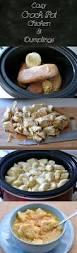best 25 chicken and dumplings ideas on pinterest chicken