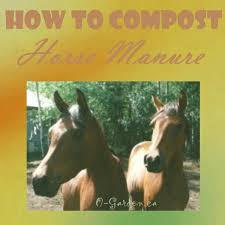 how to compost horse manure for the best natural fertilizer ever