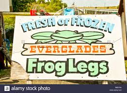 frog legs stock photos u0026 frog legs stock images alamy