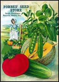 Vegetable Garden Labels by 276 Best Vintage Vegetable Seeds Images On Pinterest Vintage