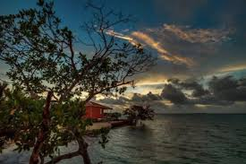 belize airbnb airbnb your own private island in belize for just 500 per night