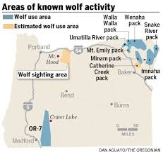 Hood River Oregon Map by Wolf Visits Mount Hood As Oregon U0027s Recovering Wolf Population