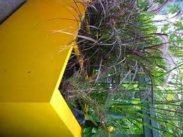 Garden Boxes Ideas Ron Planter Boxes With Nice Yellow Painting Design Apartment