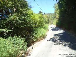 Santa Cruz County Christmas Tree Farms by Santa Cruz Mountains Ride Chronicles