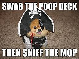 Pirate Meme - the 10 best inappropriate sexual innuendo dog that dresses and talks