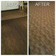 Hopkins Carpet Mean Green Carpet Clean U0026 Tile Services 37 Photos Carpet