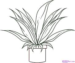 easy plant drawings