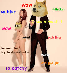 the doge meme is not funny genius