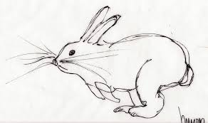 rabbit run m wood pen
