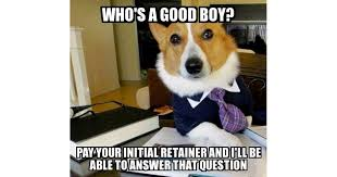 Dog Lawyer Meme - lawyer dog the other dog peed on your tree we ll sue him for