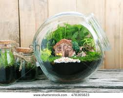 small garden terrarium bottle isolated on stock photo 429669229