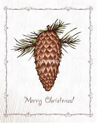 white pine cone christmas vector illustration with pine cone royalty free stock