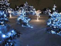 twinkling animated lights pictures photos and images