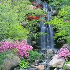 tips for japanese garden design types of japanese garden design