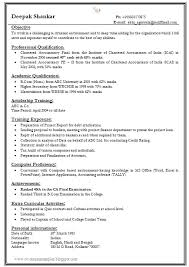 1 page resume template one page resume templates archives rupertgrintfansite us