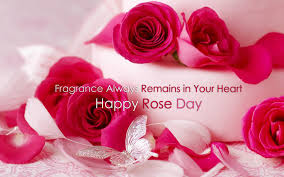 rose day images happy rose day 2017 images photos hd wallpapers