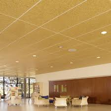 Noise Cancelling Ceiling Tiles by Enjoy Reliable Acoustic Solutions At Himalayan Acoustics In