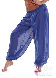 Shadow Costume Belly Dance Chiffon Harem Pants Sheer Shadow
