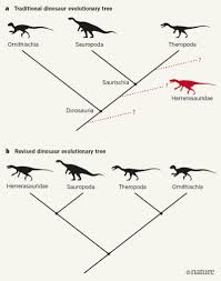 dinosaur family tree poised for colossal shake up nature