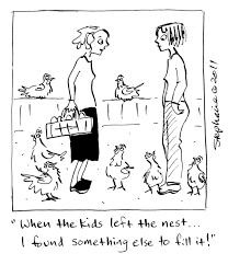 chicken cartoons lessons learned from the flock