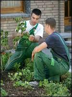 g rtner garten und landschaftsbau gärtner in fachrichtung garten und landschaftsbau