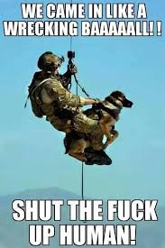 Wrecking Ball Meme - we came in like wrecking ball military humor
