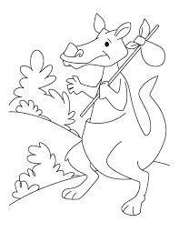 travelling kangaroo coloring page netart