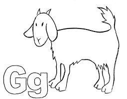 letter g alphabet adventure