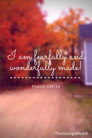 good bible verses for thanksgiving 97 best bible verses inspiration images on pinterest bible