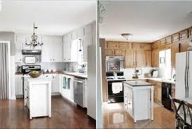 White Paint Kitchen Cabinets Amusing Diy Painting Kitchen Cabinets White Kitchen Cabinet Doors