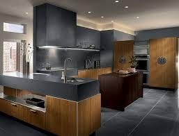 interior design interesting white waypoint cabinets with dark