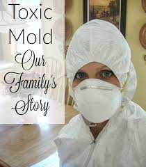 Black Mould In Bathroom Dangerous Our Toxic Mold Exposure Timeline Of Events It Takes Time