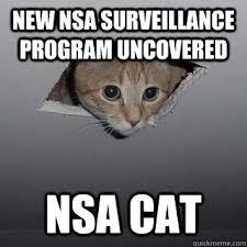 Ceiling Cat Meme - new nsa surveillance program uncovered nsa cat ceiling cat