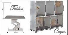 Dog Grooming Table For Sale Progroom Dog Grooming Equipment Pet Supply Workwear