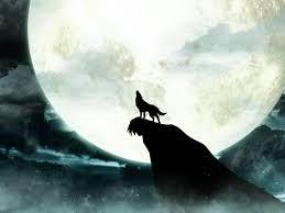 Backyard Animals Lyrics Howling Wolf Moon Wallpaper Wolves Pinterest Wolf Moon Wolf