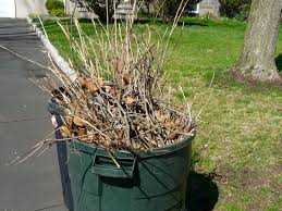 trash and yard waste collection delays due to thanksgiving day