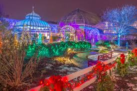 get illuminated at the winter light garden and flower show