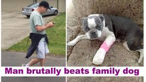 animal abusers spotlight