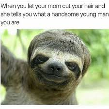 Sloth Meme Images - what a handsome young man you are i can has cheezburger